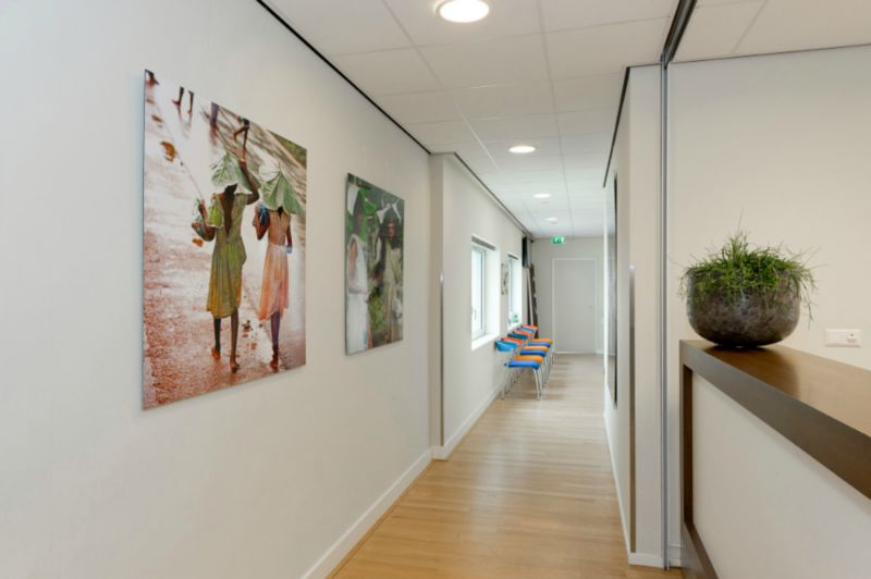 Picture hanging systems - picture rail - Goelst